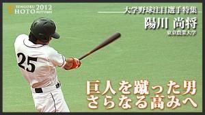 阪神 陽川 画像 どんな選手