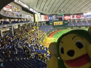 2014阪神優勝 東京ドームレフトスタンド